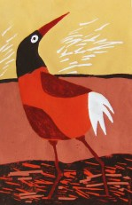 hoogdruk vreemde vogel 3